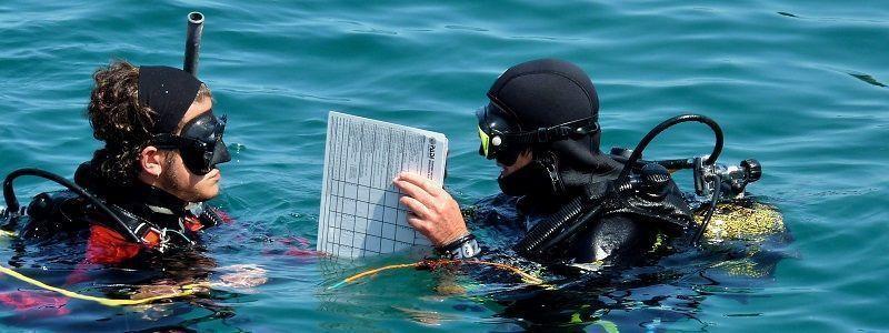 ZOEA cursos submarinismo