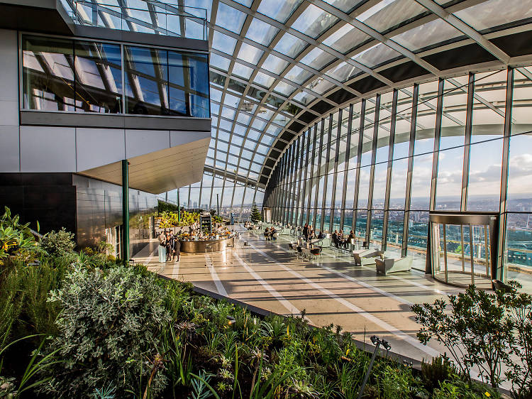 Hang out with the plants at Sky Garden
