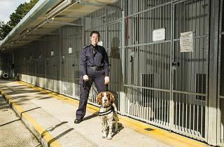 Victoria Martin TYOK Border Force dog handler