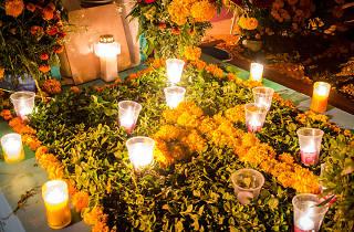 Ofrenda de Día de Muertos en México