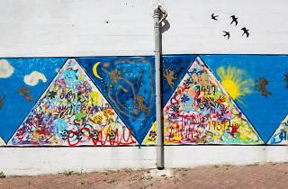 Conjunto Urbano Pantera Cor-de-Rosa