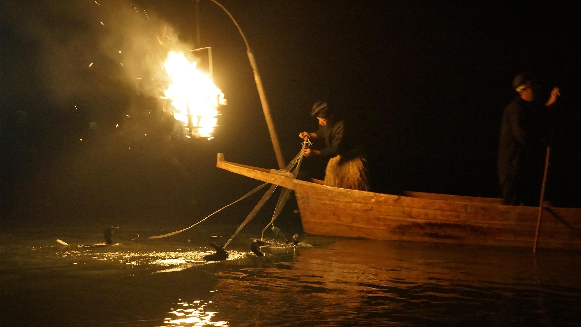 Cormorant fishing Kyoto