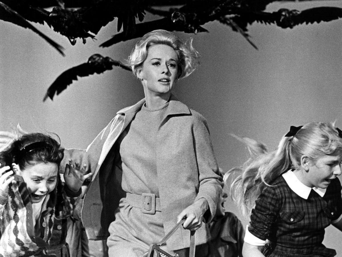 Los pájaros de Alfred Hitchcock