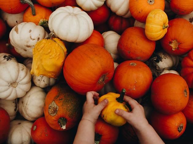 October events calendar for kids in Chicago