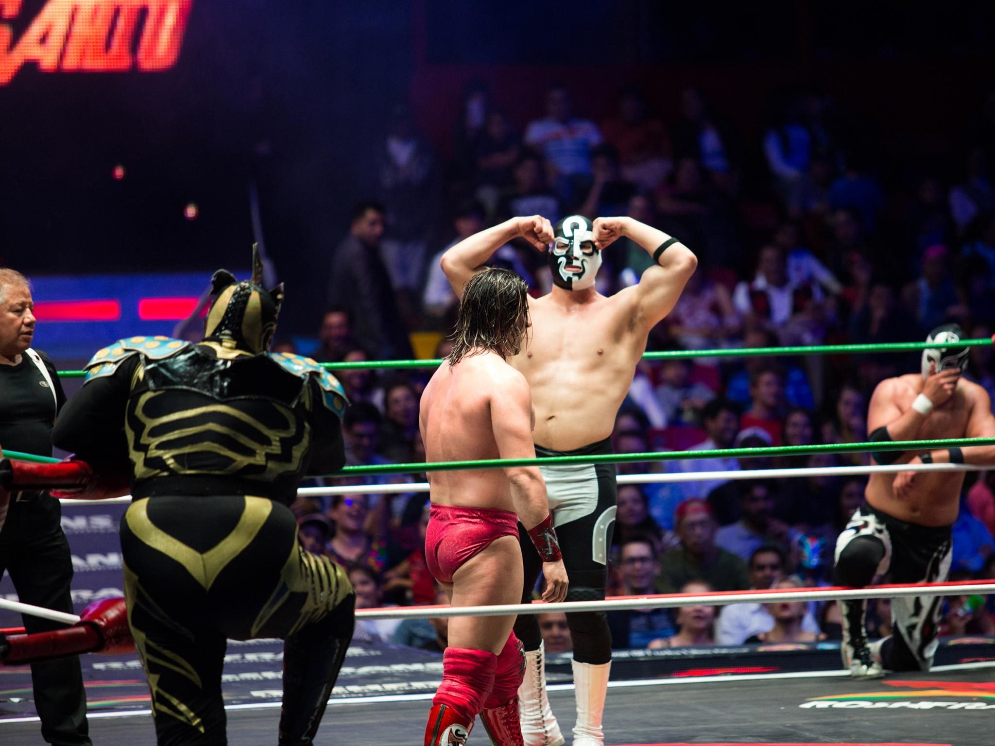Historias de la lucha libre en la CDMX