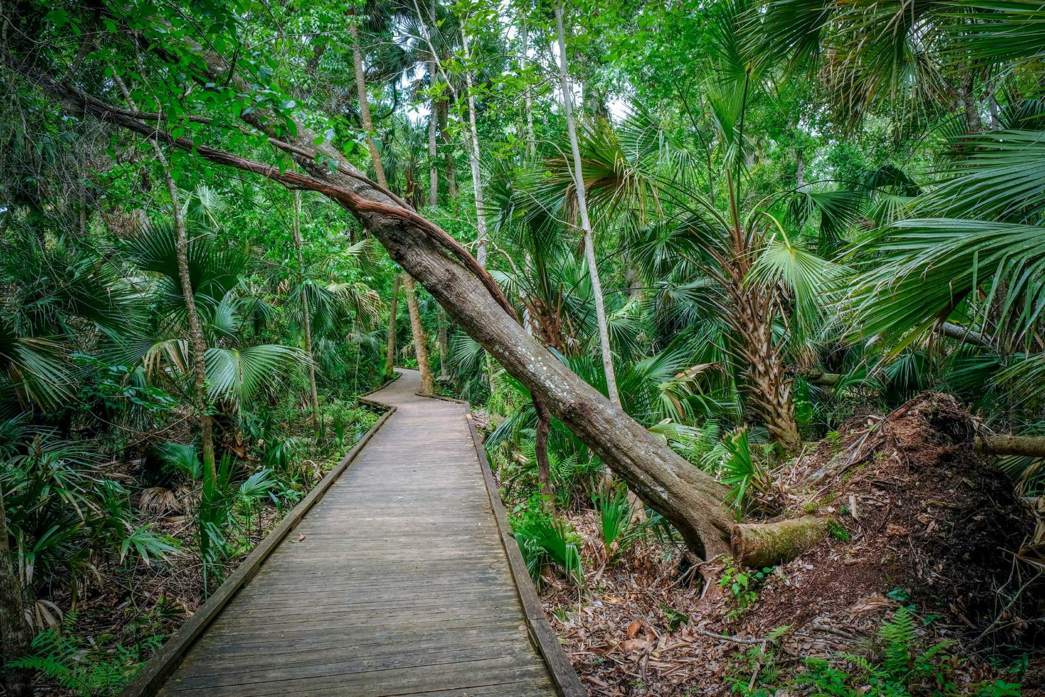 The 13 best parks in Orlando