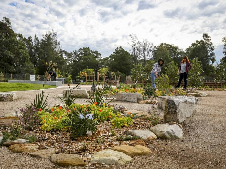 Contribute to local green spaces