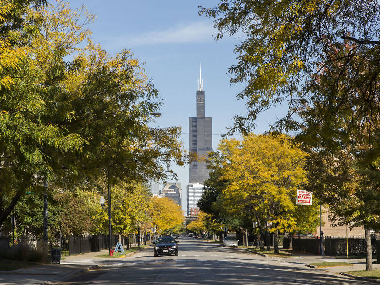 The best things to do in the fall in Chicago
