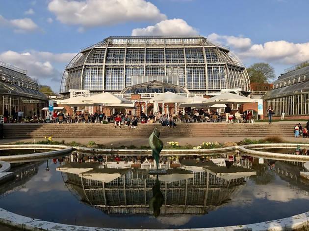 Botanischer Garten & Botanisches Museum