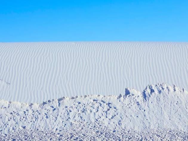 Dune Portrait
