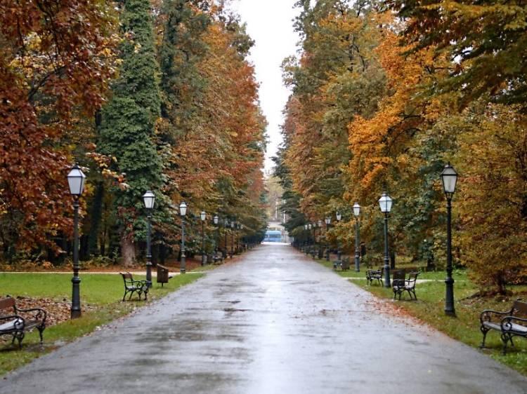 Maksimir park