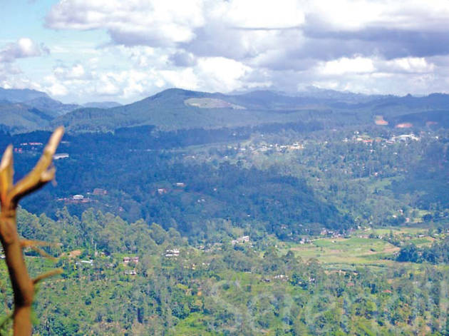 The Bliss of Bandarawela