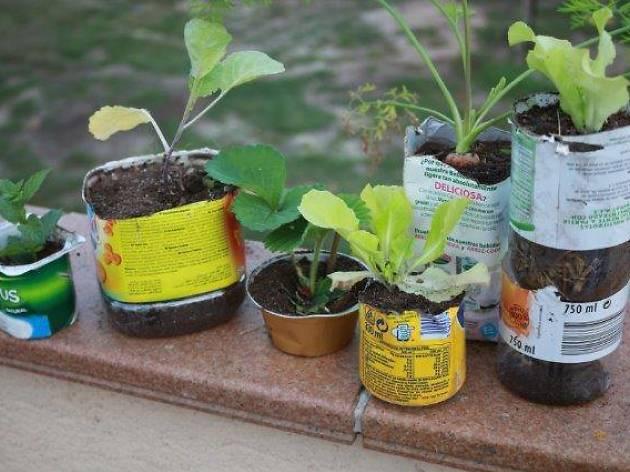 Aplec d'agricultura urbana