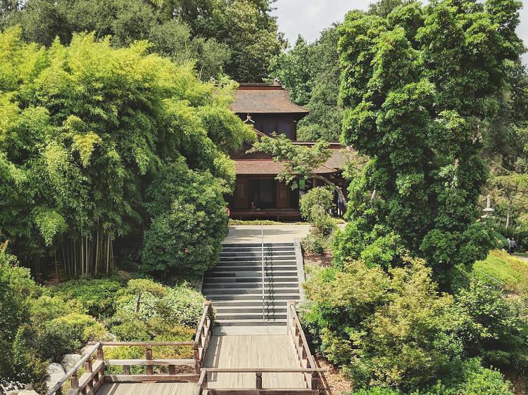 Huntington Library, Art Collections & Botanical Gardens