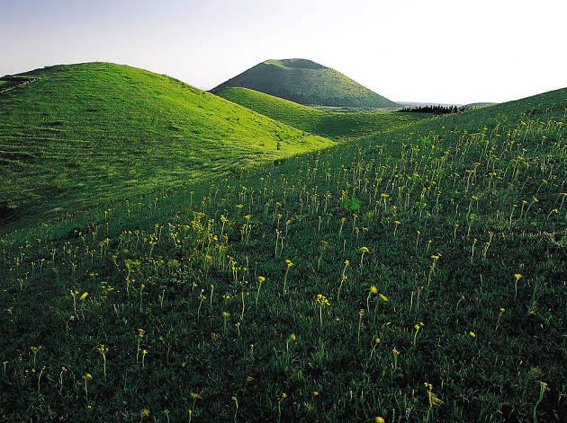 Jeju Oreum on Jeju Island