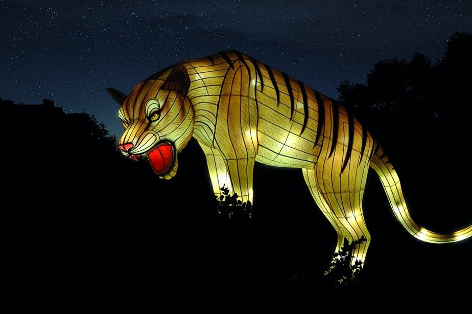 Cet automne, découvrez d'immenses structures lumineuses aux Jardin des Plantes