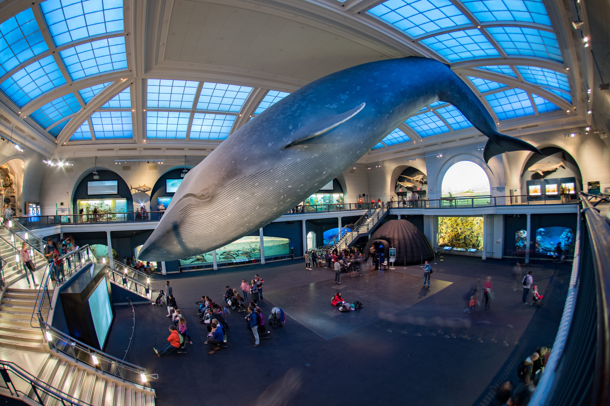 Best Childrens Museums for Families to Visit in New York