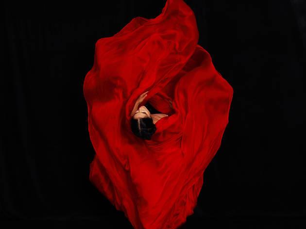 Maureen Fleming: Wildflowers