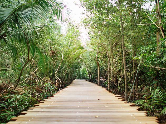 Pulau Ubin walkway