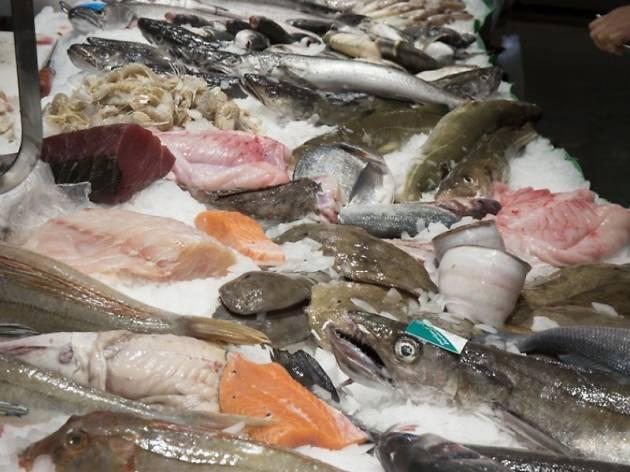 Peix Ripoll Estera