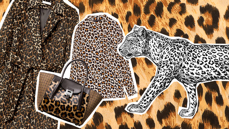 best leopard print items cover image