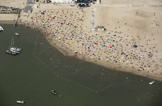 Beaches in Amsterdam