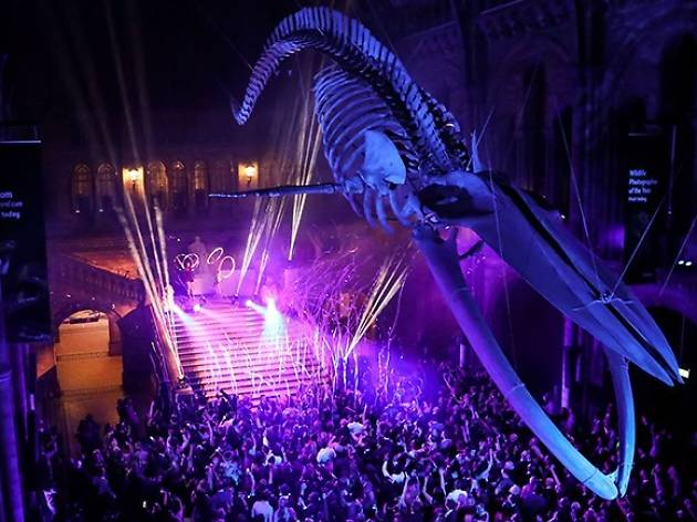 Natural History Museum New Year's Eve: Party Animals