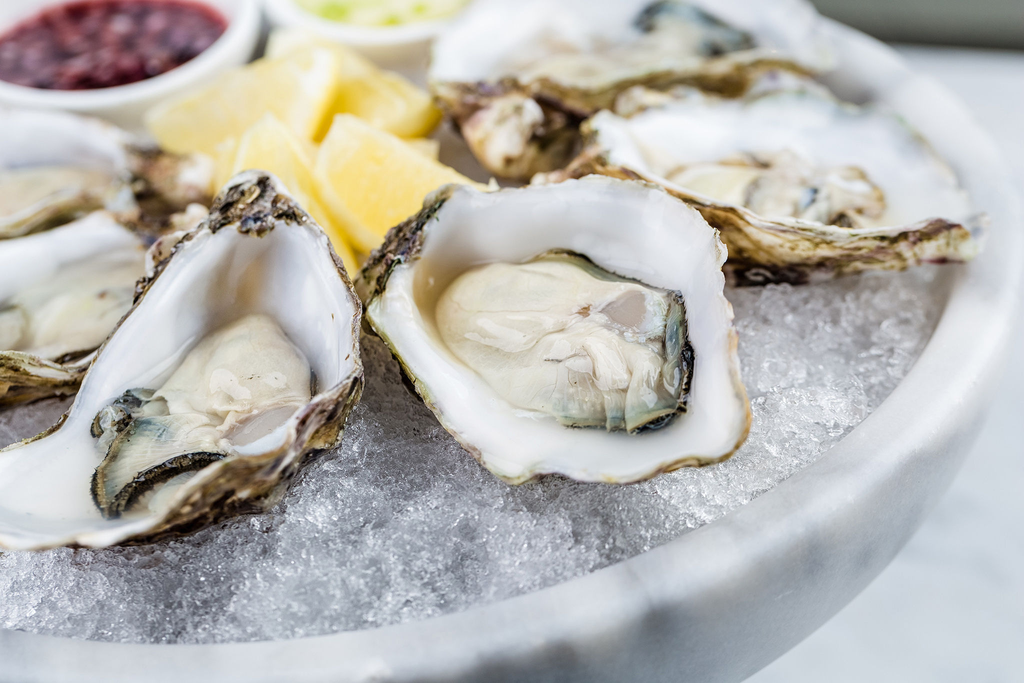 Oysters Shutterstock image for Food and Sake advertorial