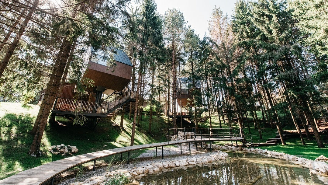 Amazing treehouses in Croatia you can actually stay in
