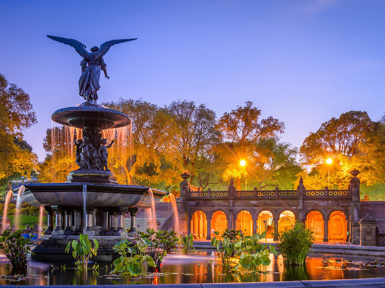 Explore Central Park like a pro