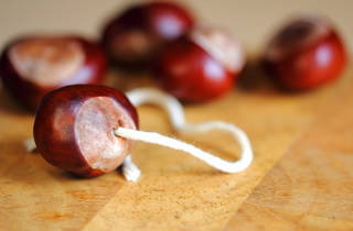 Hampstead Heath Conker Championship