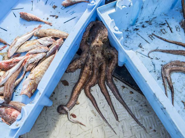 Pescadors Barceloneta