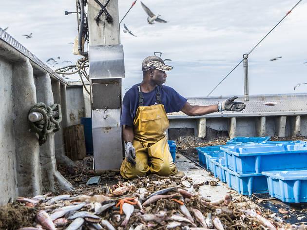 Un día con los pescadores de la Barceloneta