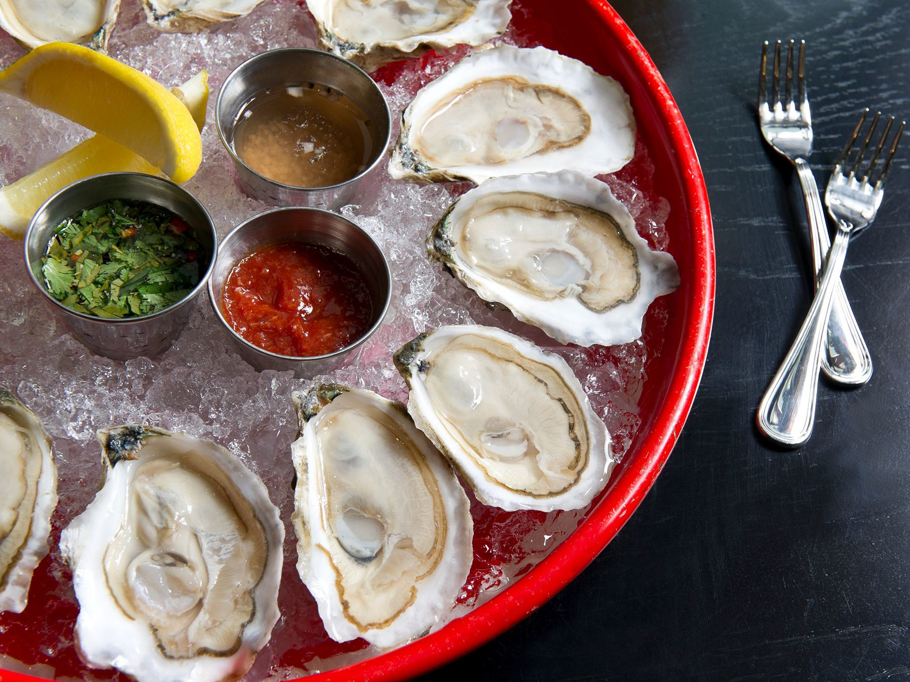 12 best oyster bars in Boston