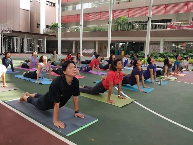 Yoga Nikam