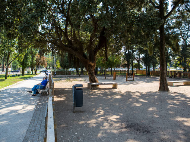 dog park, campo grande, cão, cães, parque