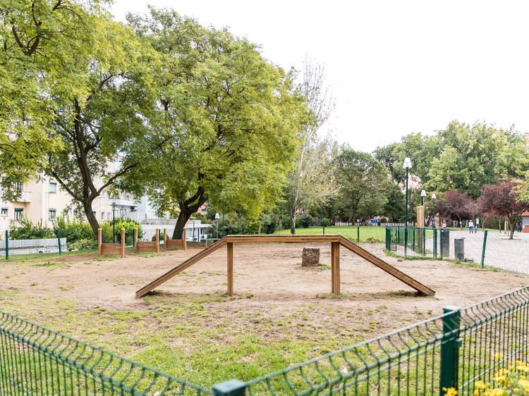 Tire a trela ao cão e deixe-o brincar nestes parques caninos em Lisboa