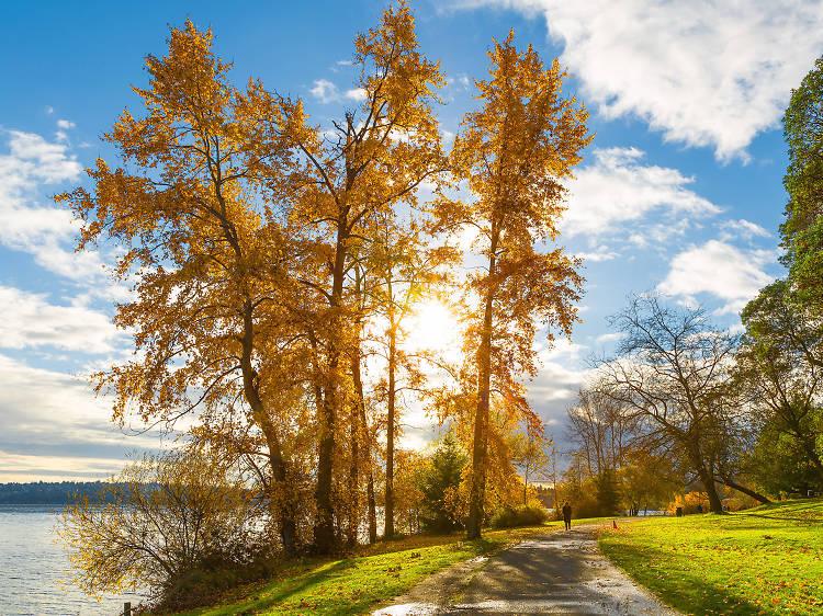 12 fabulous parks in Seattle