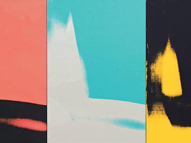 Andy Warhol, Shadows, 1978–79, detail