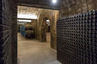 Caves Freixenet Sant Sadurní d'Anoia