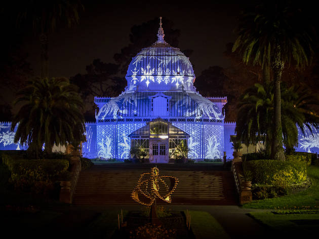 Conservatory of Flowers 'Night Bloom'
