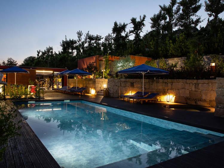 Vale de São Torcato Houses & Wine Bar