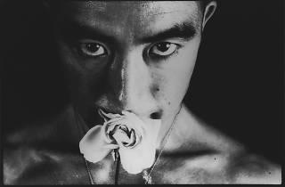 Hosoe Eikoh, Ordeal by Roses#32,1961