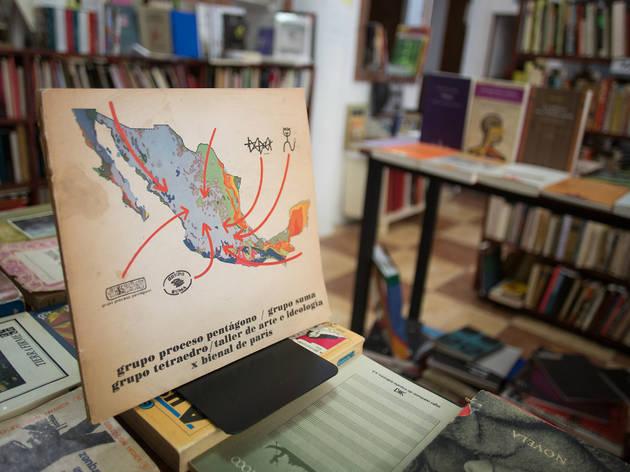 La murciélaga (Foto: Alejandra Carbajal)