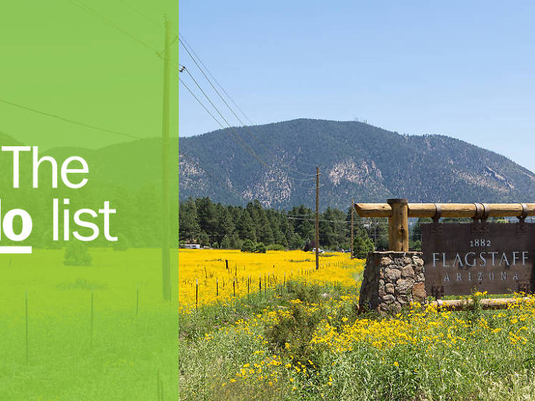 The 10 best things to do in Flagstaff