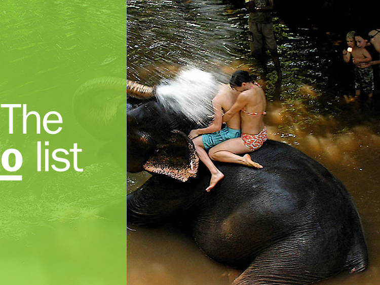 The 14 best things to do in Goa