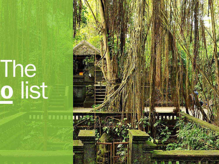 The 11 best things to do in Ubud