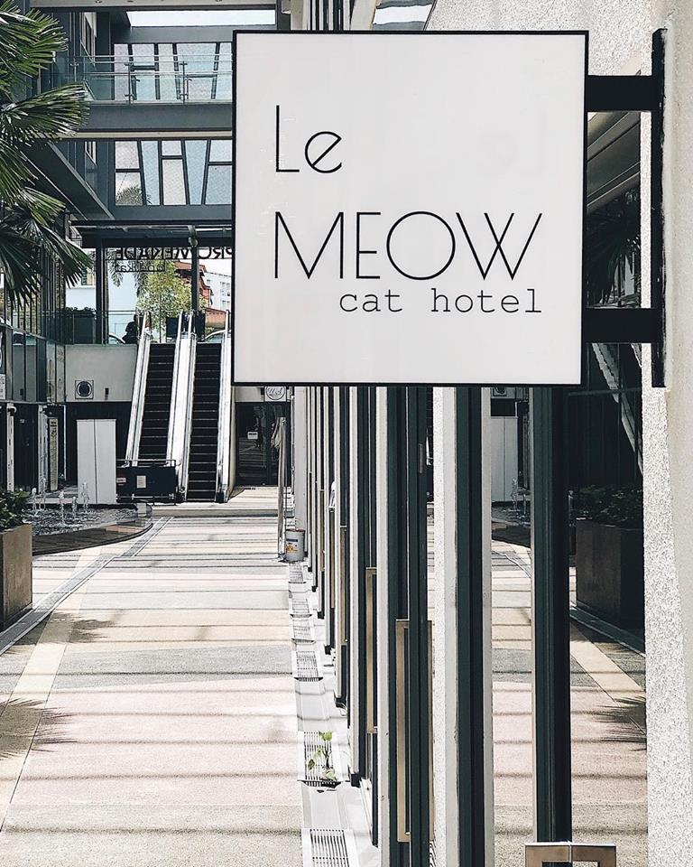Le Meow Cat Hotel