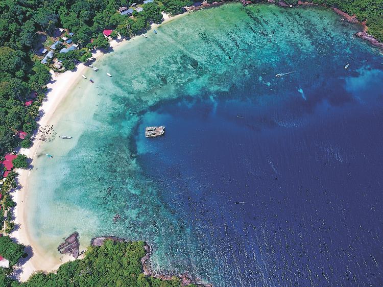 Tenggol Island 天鵝島