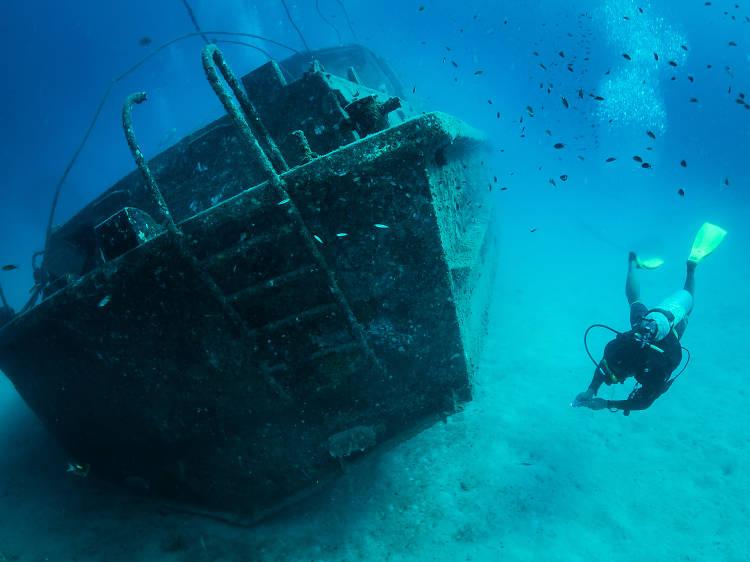 潛游海底世界